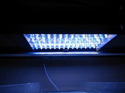 Lighting Up Alzheimer's. Change the lighting: improve your health.